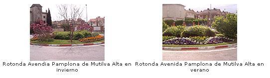 Rotonda Avenida Pamplona de Mutilva