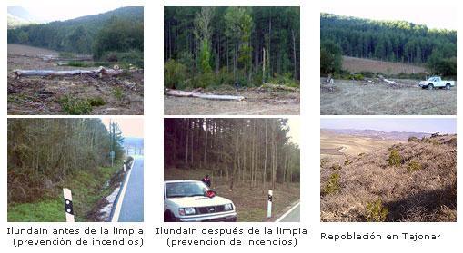 Conjunto de bosques, pastizales, matorrales