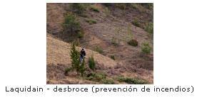 Prevención de incendios en Laquidain